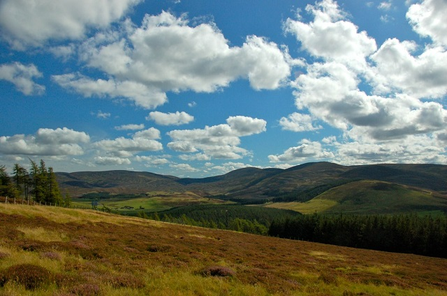 View of the Cairngorms from the A939 (Lecht Road). Photo credit: John Mason