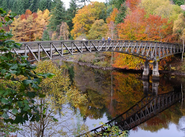 Autumn colours at Killiecrankie gorge