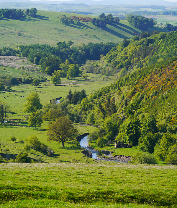 The rolling hills and green countryside of the Scottish Borders