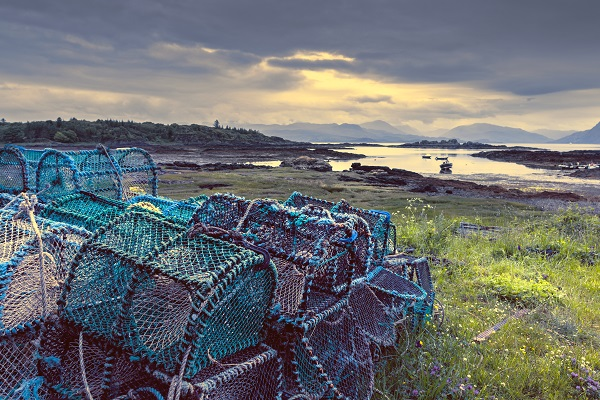 You're never too far from the Scottish coast and its abundance of fresh, delicious seafood